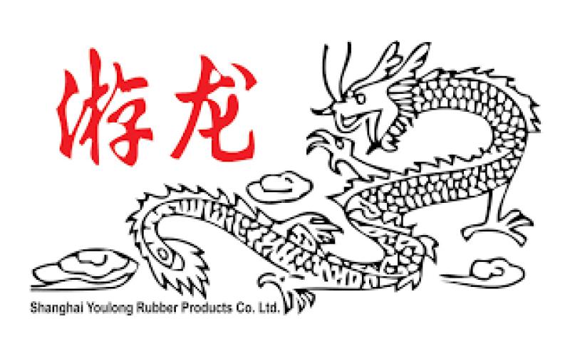 youlong-logo